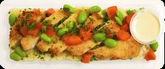 Chicken Katsu & Tempura Rice - Individual