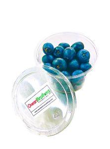 Pot of Organic Blueberries