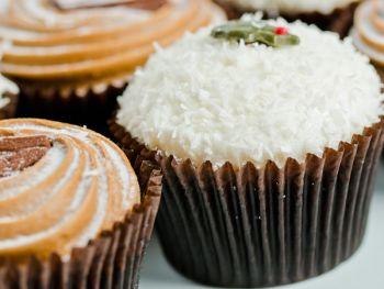 Christmas Baby Cupcake Selection