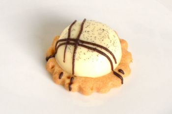 Vanilla Panacotta with Belgian Chocolate Drizzle