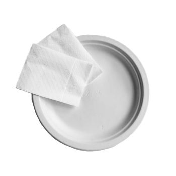 Disposable Paper Plates & Serviettes