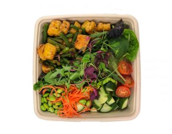 Vegan Oriental Bento Box - Tofu, Edamame & Green Beans