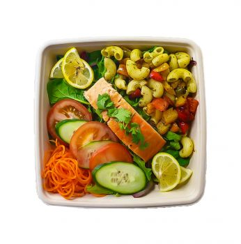 Hot Roasted Salmon with Pasta - Bento Box
