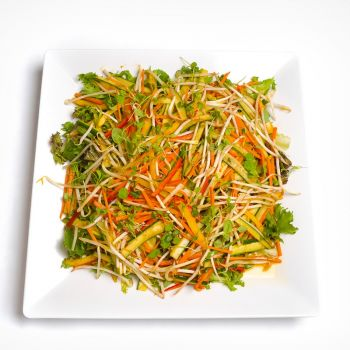 Platter Of Pan Asian Style Salad With Beansprouts